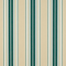Forest Green Beige Natural Fancy Stripe